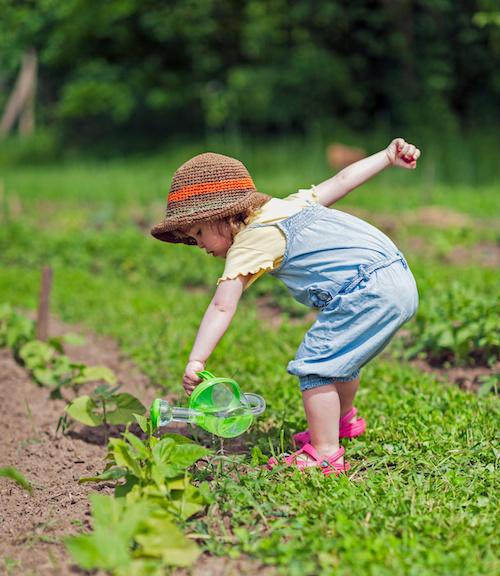Gemüsebeet, Hochbeet & Gemüsegarten für Kinder