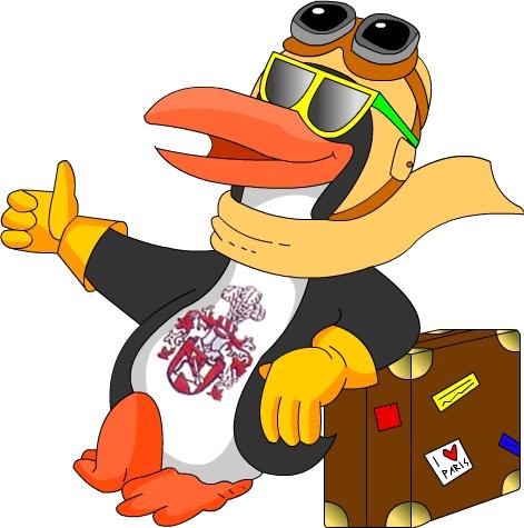 KidsLoop Pinguin Maskottchen